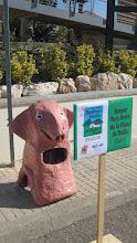 Senyor Porc-Verro de la Plana