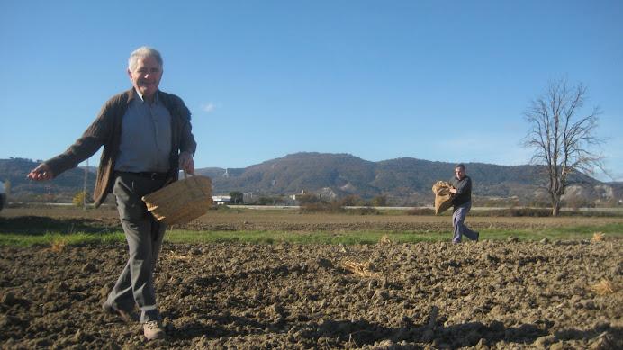 """En Pere del Tei sembrant el blat i en Joan de la Fàbrica """"asseionant"""""""