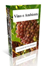 "Gratis il tuo e-book ""Vino e Ambiente"""