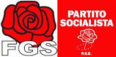 socialisti ostuni