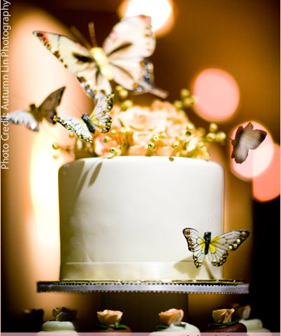 [butterfly-cupcake2.jpg]