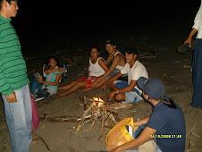 Campaña de Protección de las Tortugas Marinas