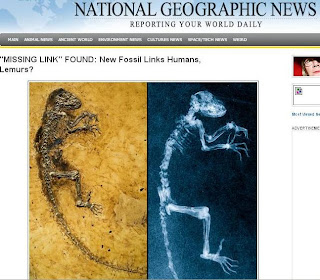 missing link found