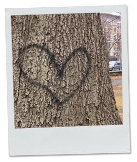 [hearttree]