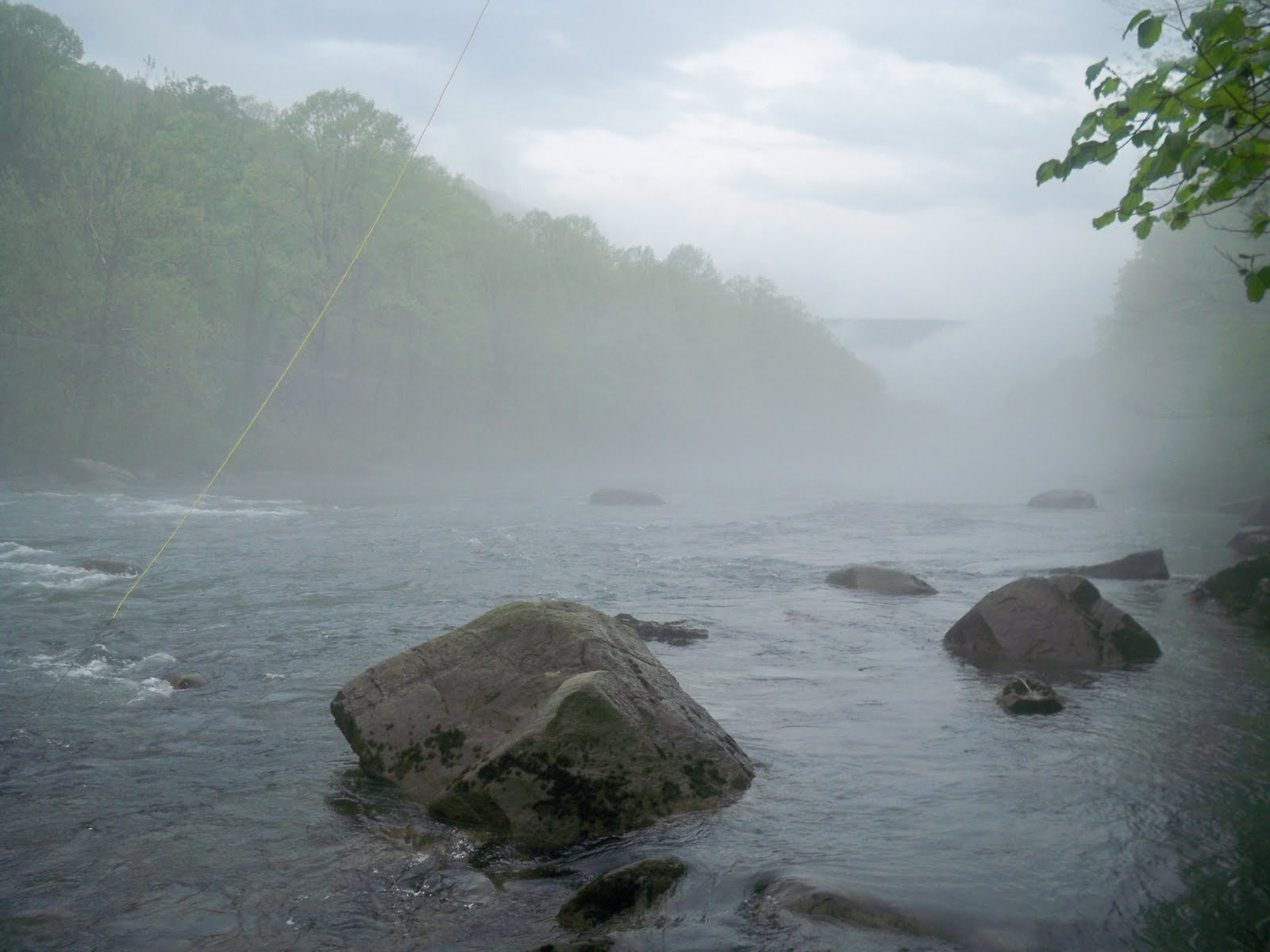 Grobe anglers and adventures the fog for Youghiogheny river fishing