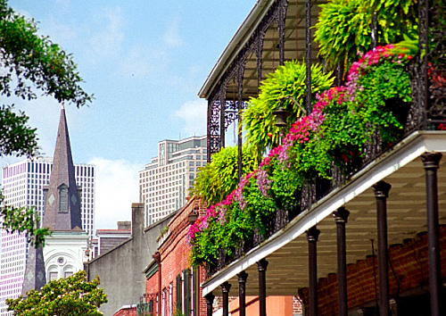 New Orleans by David Paul Ohmer