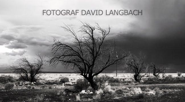 Fotograf David Langbach
