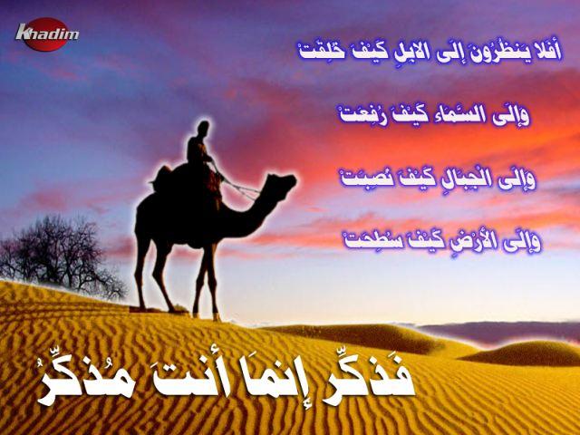 [camel[1].jpe]