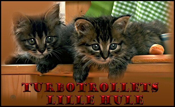 Turbotrollets lille hule