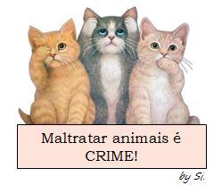 Cuide dos Animais !