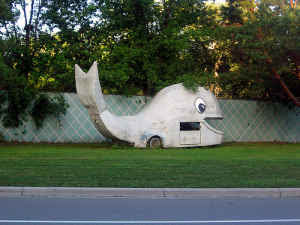 WhaleMobile For Sale - Going Slow