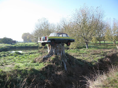 Painted Mercedes Getting Stumped in New Zealand