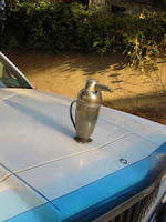 Martini Shaker Penguin Car Hood For Sale