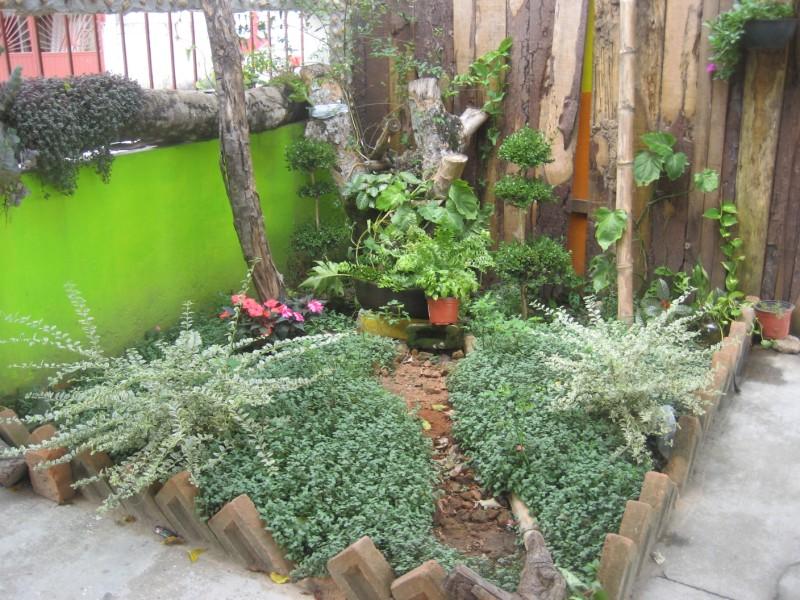 Supervisi n de zona escolar 118 primaria federal jardines for Jardines pequenos para escuelas