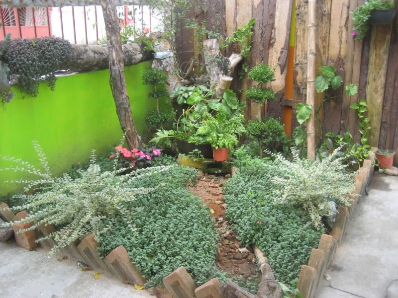 Supervisi n de zona escolar 118 primaria federal jardines for Ver jardines