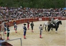Infiesto(Asturias)