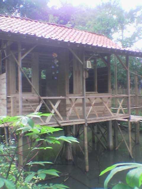 berlibur di rumah kayu di atas kolam ikan vacationing in