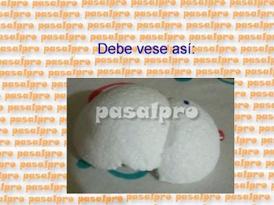 FOFULAPICERO CON PIES DE LA WEB (PASALPRO) CON PAP 028