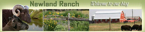 Newland Ranch
