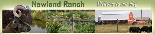 Newland Ranch