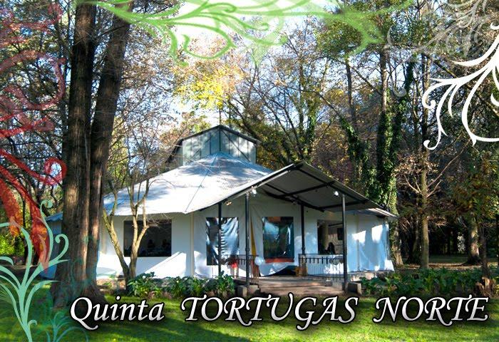QUINTA TORTUGAS NORTE
