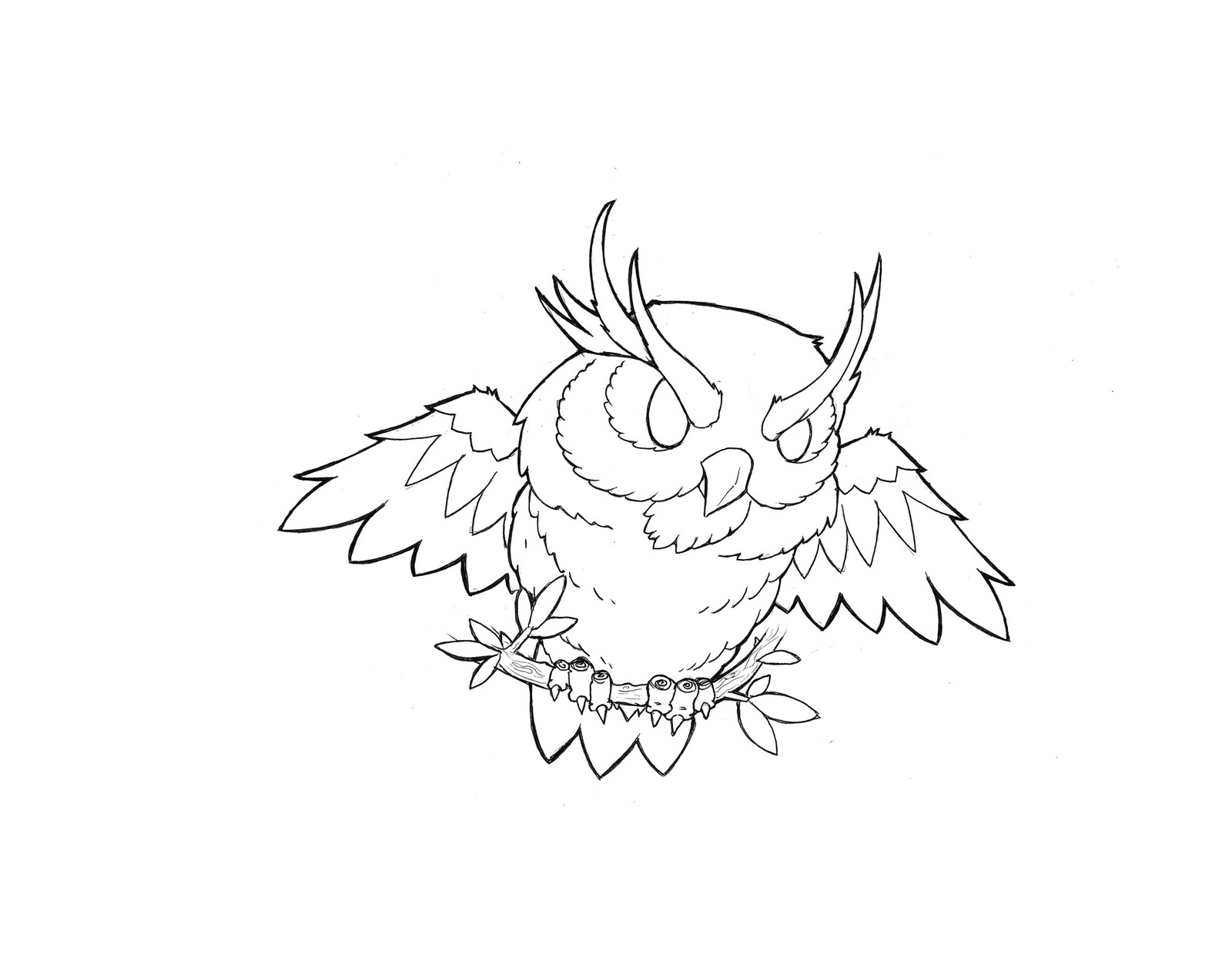 Owl Tattoo Outline Drawings