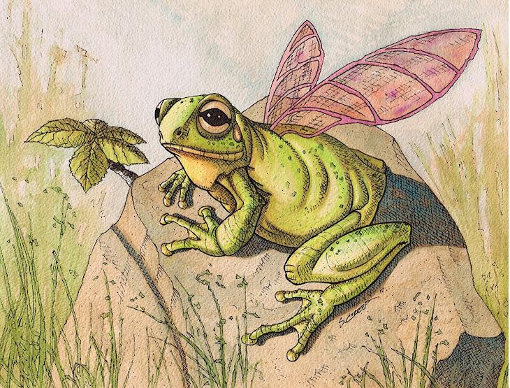 Fairy Frog