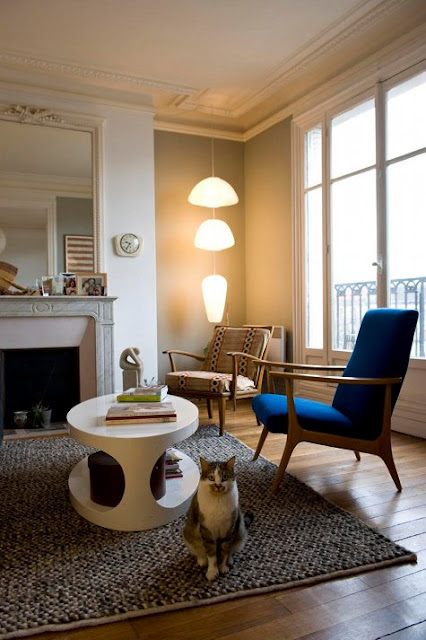 Begonvilli ev temmuz 2010 for Interieur appartement parisien