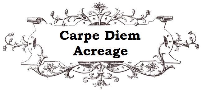 Carpe Diem Acreage