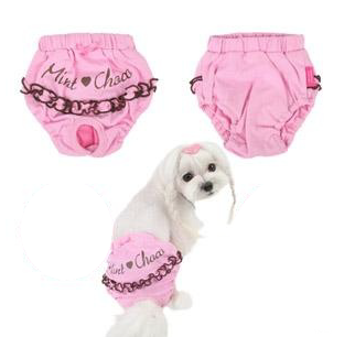 DIY Dog Diaper Pattern Female