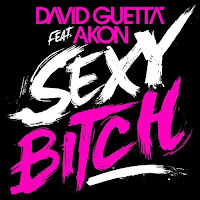 David Guetta feat Akon Sexy Bitch cover David Guetta Feat. Akon   Sexy Bitch 2009