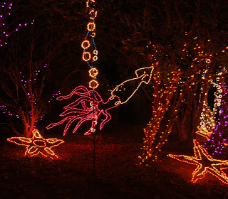 Christmas lights in the evening bellingrath garden