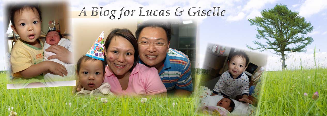 Blog for Lucas & Giselle