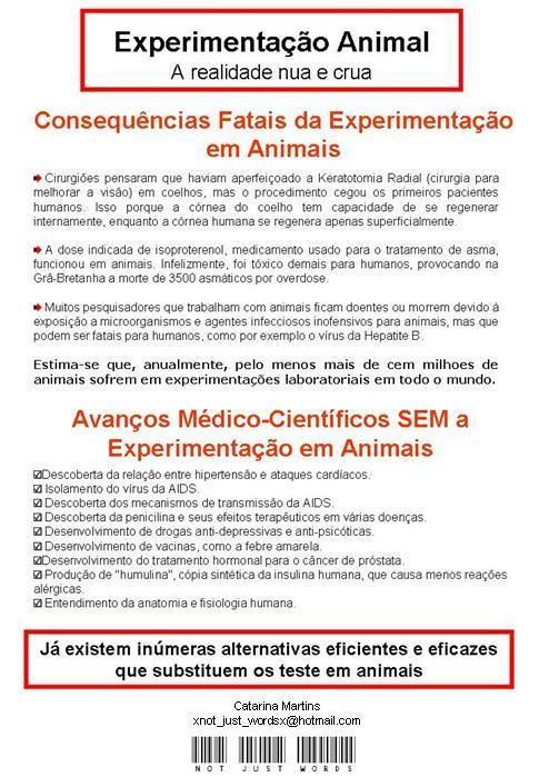 [experimentação+animal.jpg]