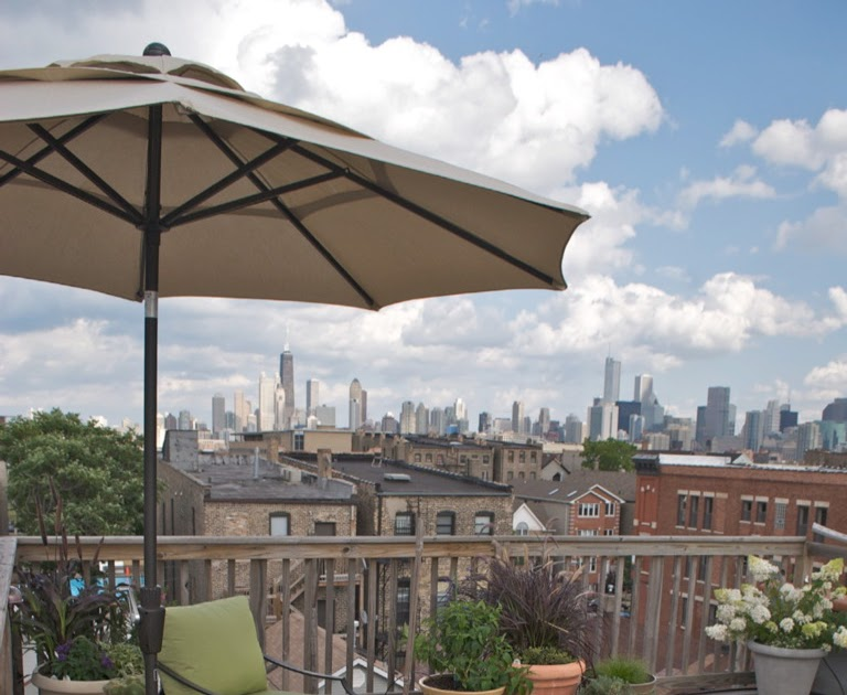 The chicago real estate local dream roof deck 1309 n for Dream roof