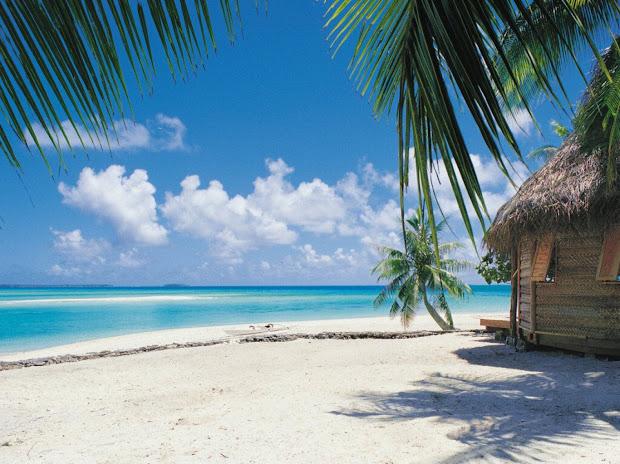 tropical paradise beautiful landscape