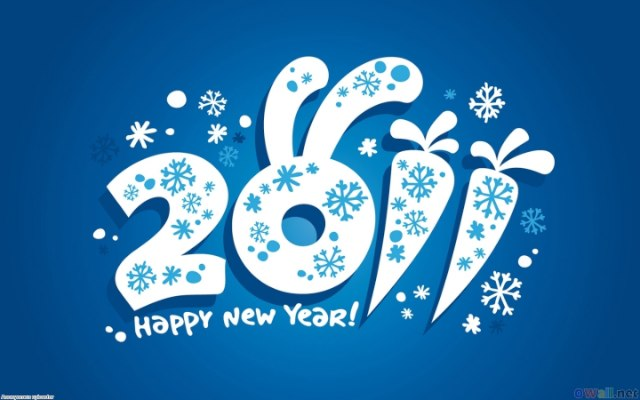 HAPPY NEW YEAR 2011 ! This special post from me. health blog that reviews