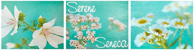 Serene Seneca