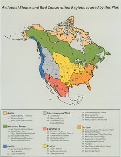 weltanschuuang Ecoregions