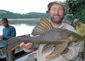 Pesquisadores encontram peixe que come madeira