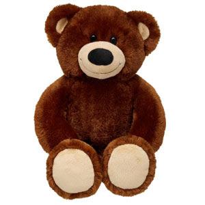Build A Bear Coupon Not Working
