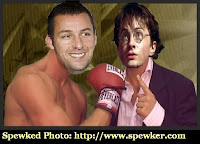 Doctored Phot of Adam Sandler and Daniel Radcliffe duking it out at the weekend box office