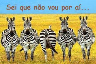 zebras[1].jpg (320×215)