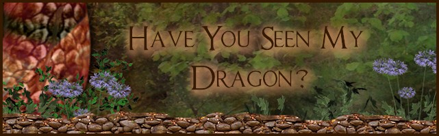 have you seen my dragon