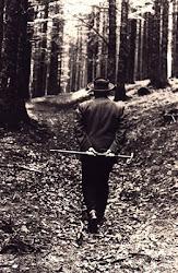 Heidegger en la Selva Negra
