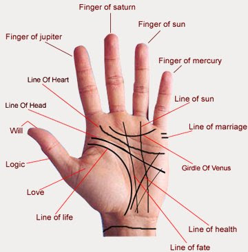 Palm Reading Lines On Hands