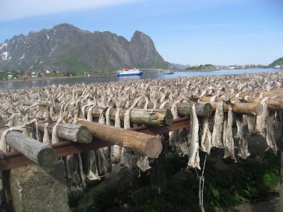 Norwegischer Exportschlager: Stockfisch bei Reine / Lofoten