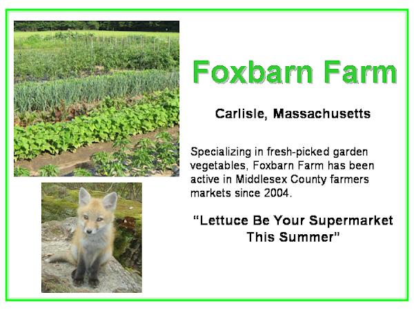 Foxbarn Farm