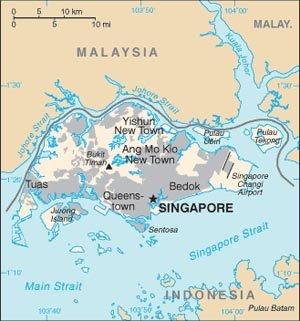http://1.bp.blogspot.com/_xtB7GOw7PP4/SA8Opl0Zp8I/AAAAAAAACIM/JTWLKJ_M0ks/s400/singapur.bmp