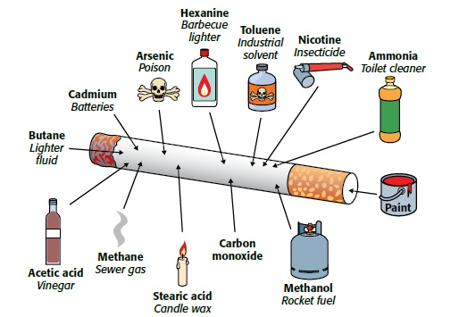 Toxic substances in cigarettes essay